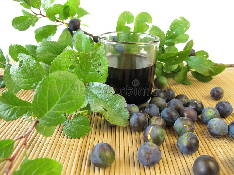 Sloe fruits liquor royalty free stock photo