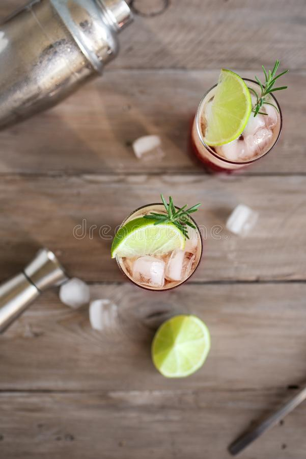 Sloe Gin Fizz Cocktail. Pink cold alcohol drink with ice, lime and soda, copy space royalty free stock image