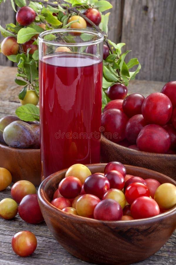 Download Sloes i śliwki z sokiem obraz stock. Obraz złożonej z śliwka - 42525735