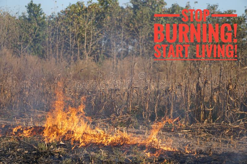 The slogan of stop global warming and stop burning on the background of fire royalty free stock photos