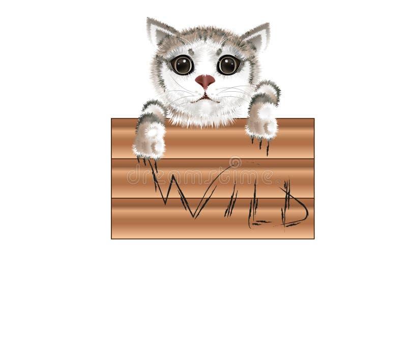 Slogan wild with cat royalty free illustration