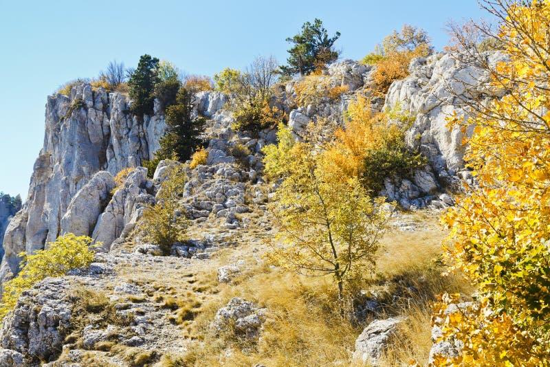 Slope Ai-Petri mountain in sunny autumn day stock image