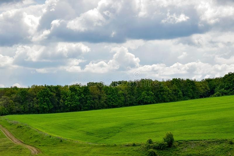 The slope of a green hill and a country road against the background of forest and cloudy sky. Selective focus. Copy space royalty free stock photos