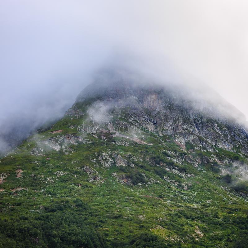 The slope of a mountain with vegetation is hidden by a cloud. stock image