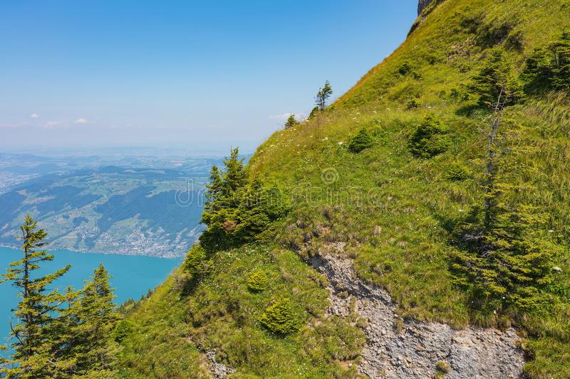 Slope of Mt. Rigi in Switzerland in summer. Mt. Rigi is a popular tourist destination, accessible by mountain rack railway royalty free stock photo