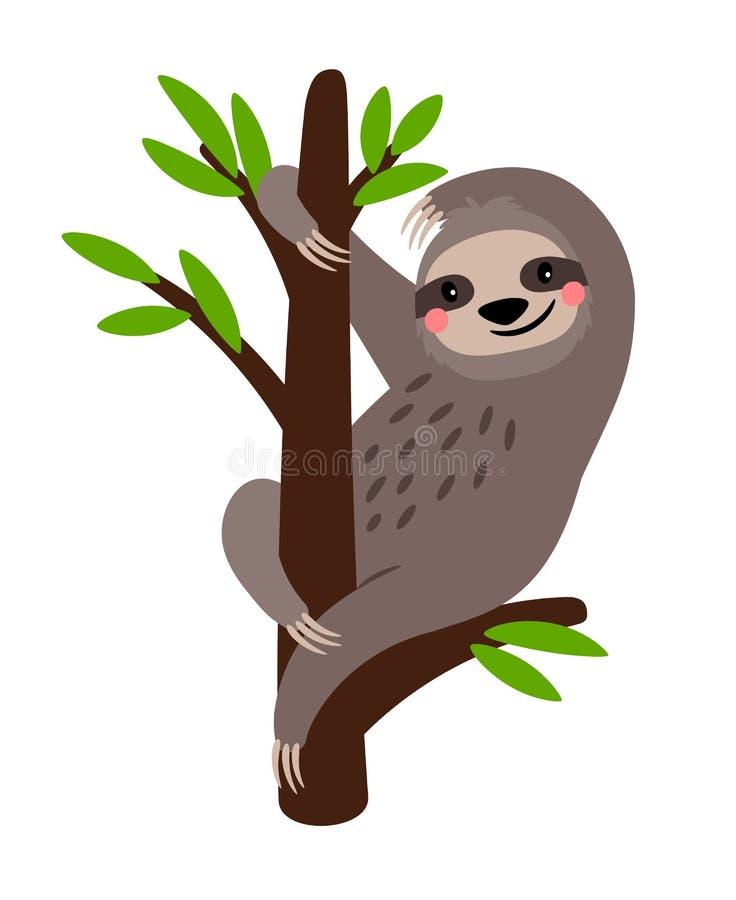 sloth Caráter animal bonito do urso de preguiça do vetor no ramo de árvore isolado no branco ilustração stock