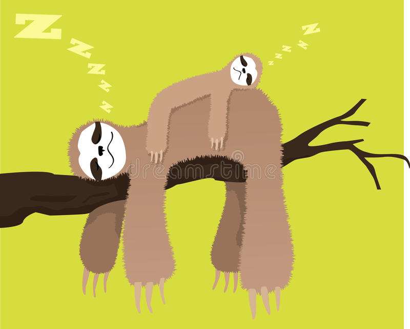 Sloth family. Cartoon sloth sleeping on a branch with a baby sloth on his back, EPS 8 vector illustration, no transparencies vector illustration