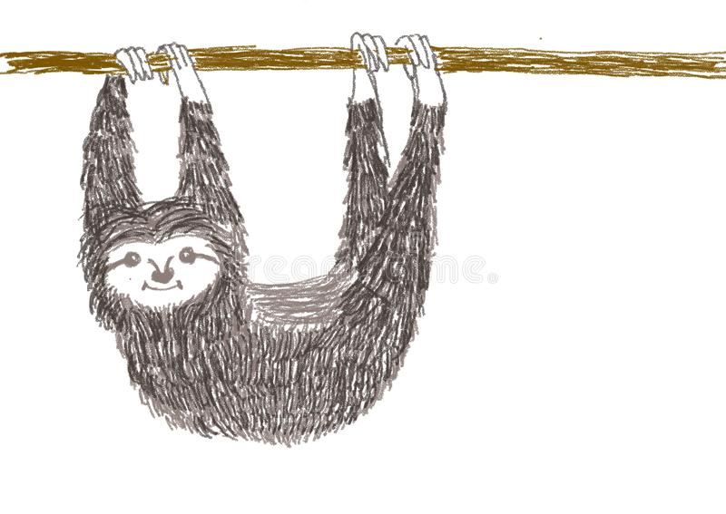 A sloth hanging royalty free stock images