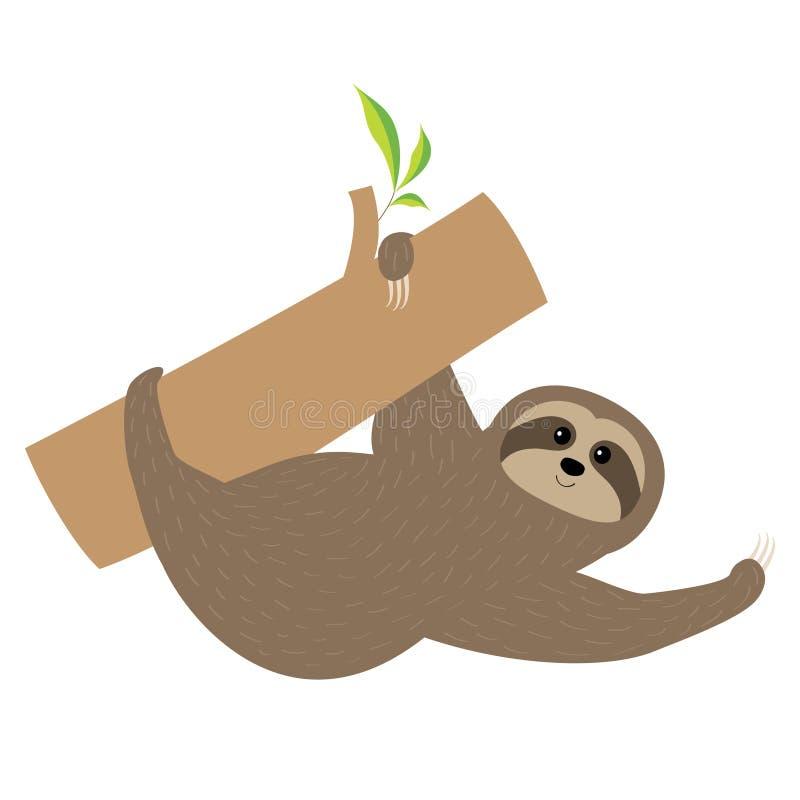 sloth Personagem de banda desenhada bonito do ramo de árvore Pele macia Coleção selvagem do animal do joungle Matriz e bebê em ed ilustração royalty free