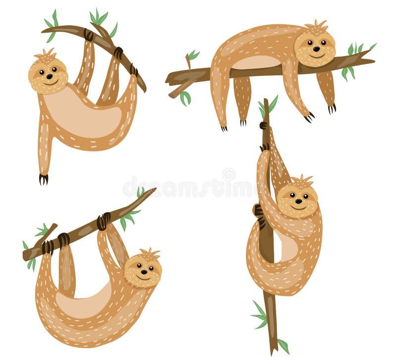 Sloth Personnage De Dessin Animé Mignon Danimaux Type
