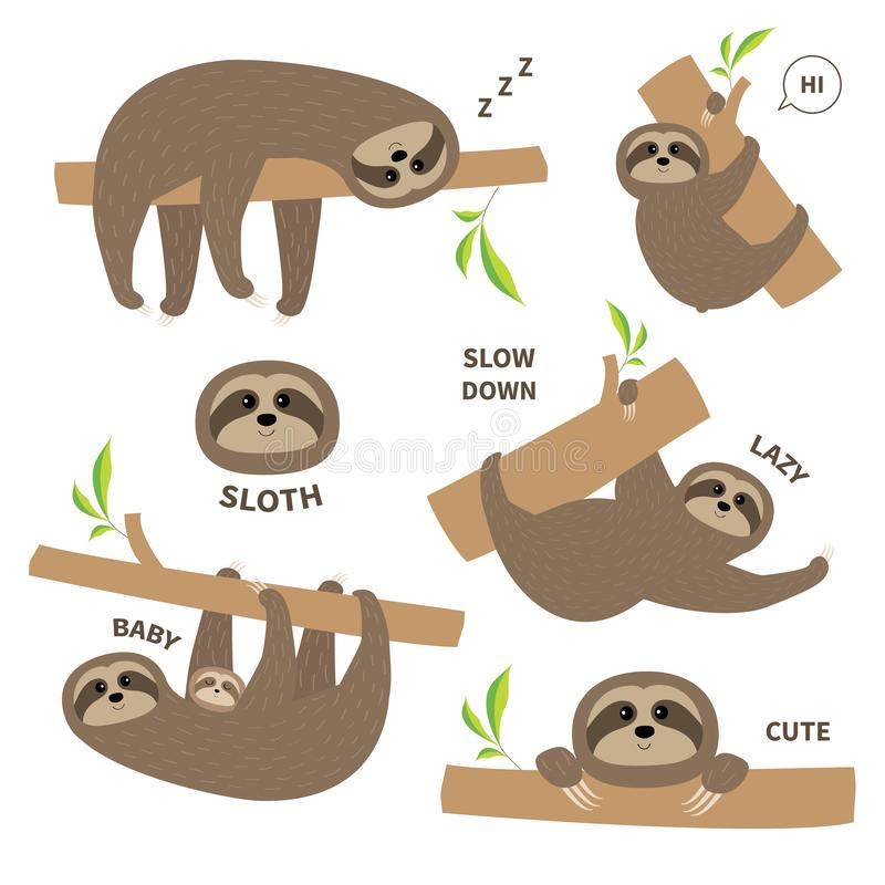 Sloth set mother with baby. Cute lazy cartoon kawaii character. Fluffy fur. Slow down text. Tree branch Wild joungle animal collec. Tion. Isolated. White royalty free illustration