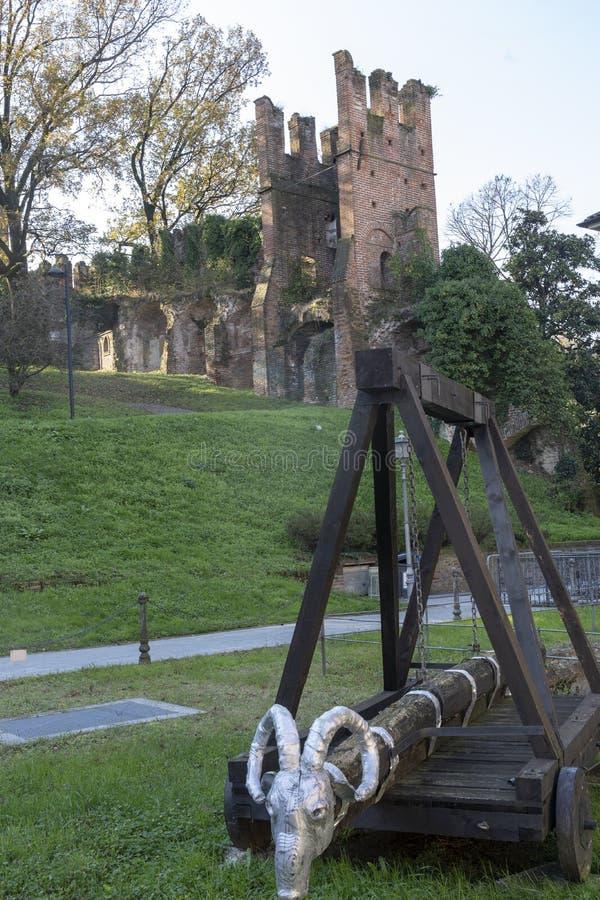 Slott av San Colombano al Lambro, Italien arkivbilder