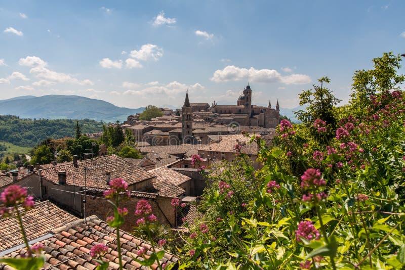Slott av Urbino i Italien fotografering för bildbyråer