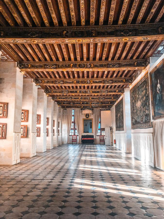 Slott/Château de Brissac arkivbilder