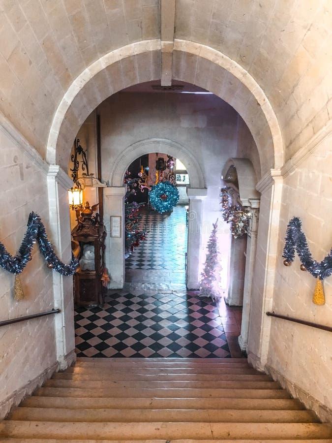 Slott/Château de Brissac royaltyfri foto