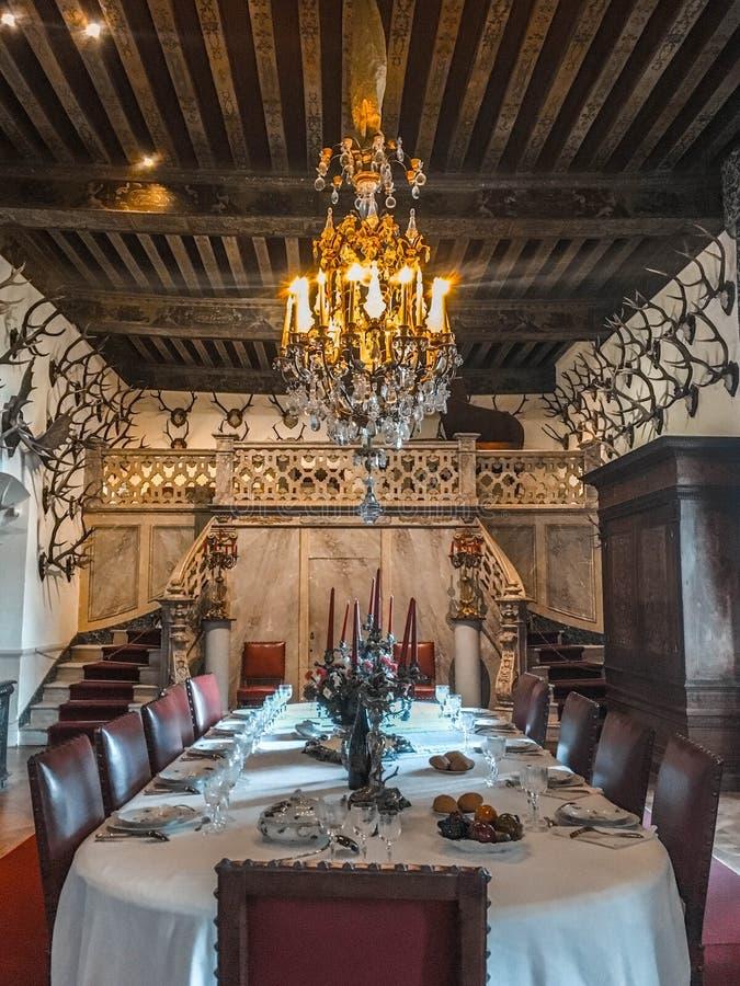 Slott/Château de Brissac royaltyfria foton