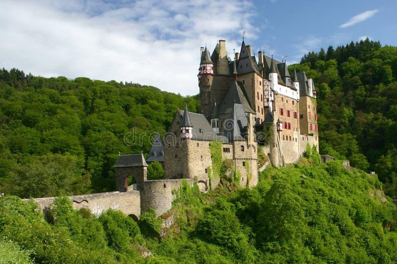 slott gammala rhine River Valley royaltyfri bild