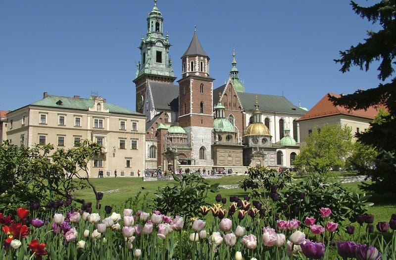 slott krakow royaltyfri bild
