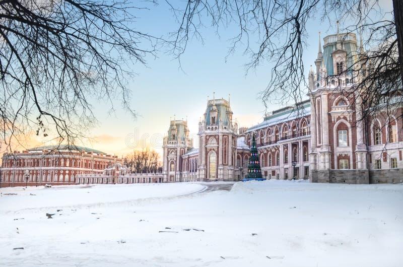 Slott på vintern arkivfoto