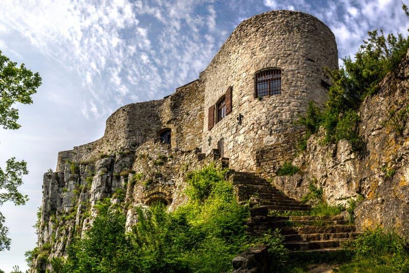 Slott Socerb arkivbild