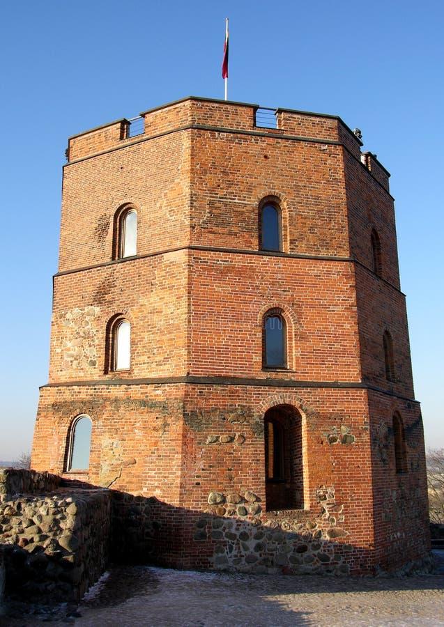 slott vilnius royaltyfria bilder