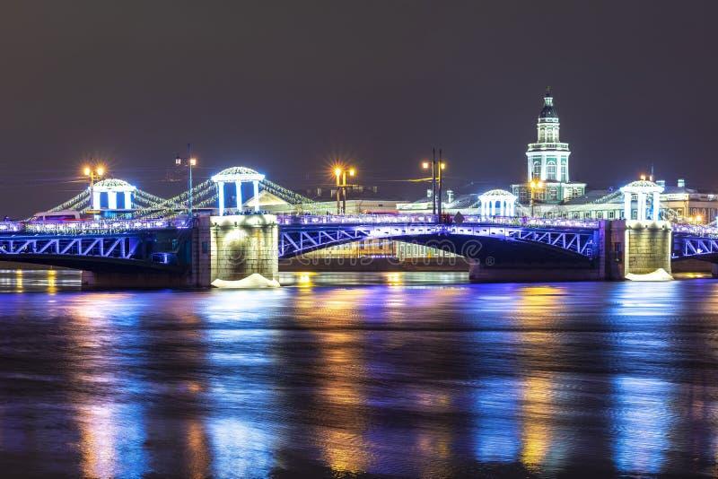 Slottbron och Kunstkamera under nytt år och jul semestrar, St Petersburg, Ryssland royaltyfri fotografi