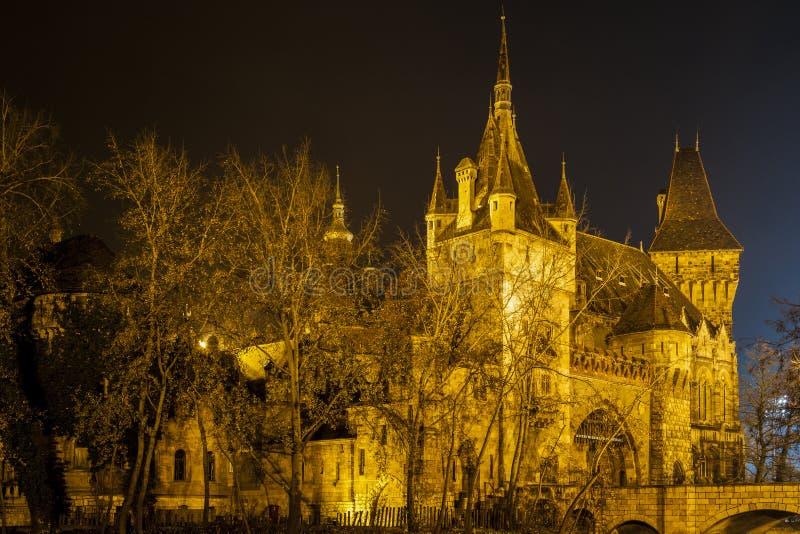 Slotten i staden parkerar av Budapest vid nattljusen Budapest royaltyfria bilder