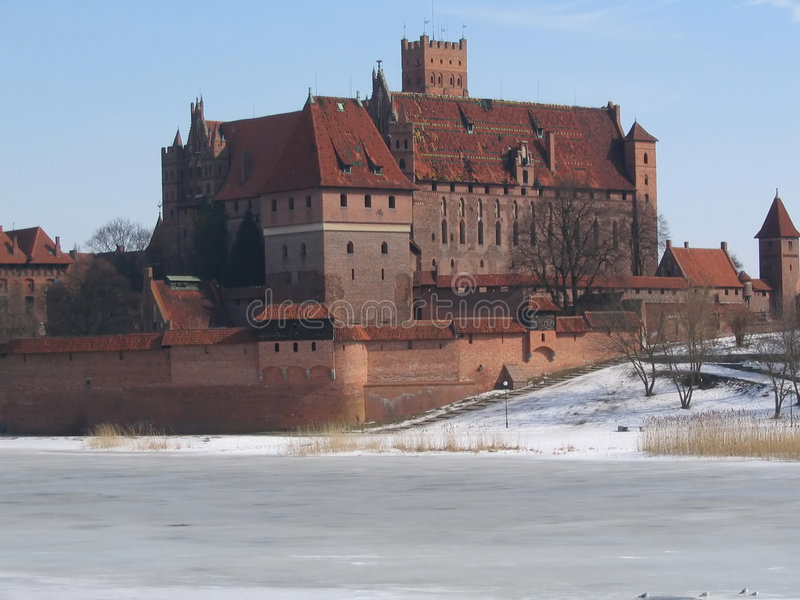 slottet adlar teutonic malbork arkivfoto