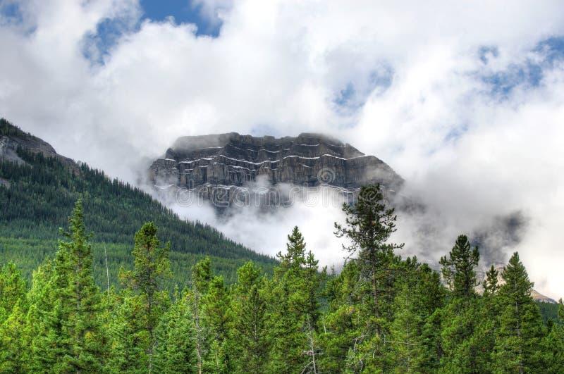 Slottföreningspunkt, Banff nationalpark royaltyfri fotografi