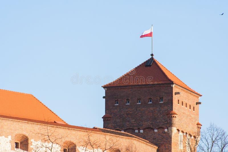 slottkunglig personwawel Tjuvar står högt med flaggan av Polen på överkanten royaltyfri bild