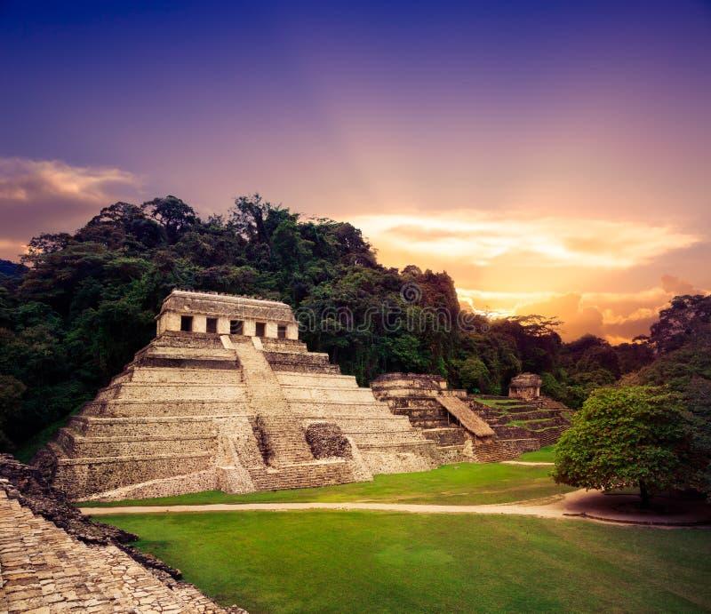Slottobservationstornet i Palenque, Mayastad i Chiapas, Mexico arkivbilder
