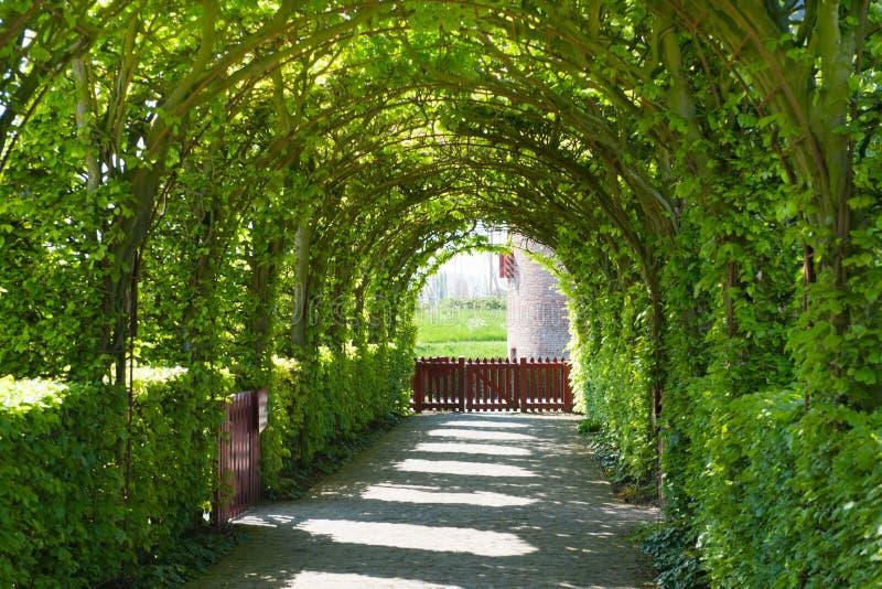 slottträdgård royaltyfria foton