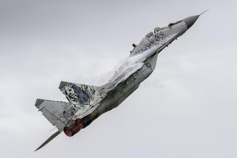 Slovacco MiG-29 a Leeuwarden fotografia stock libera da diritti