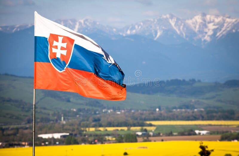 Slovak national flag royalty free stock photos