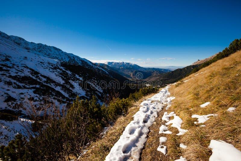 Slovakian Belianske Tatry mountains landscape. Beautiful slovakian Belianske Tatry mountains. Beautiful sunny panorama - dolina zadnych medodolov royalty free stock image