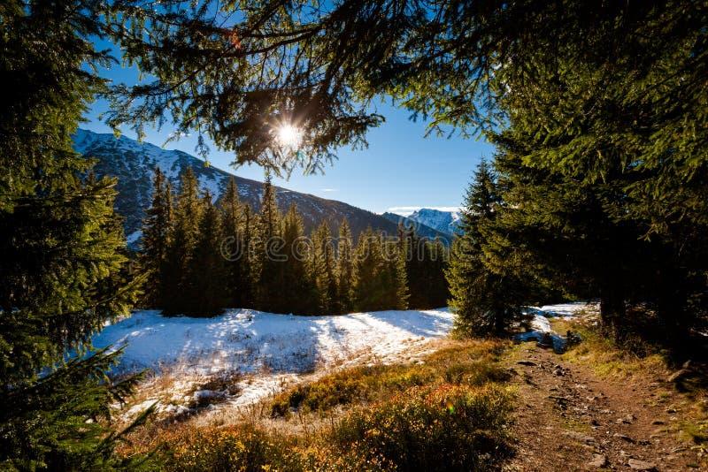 Slovakian Belianske Tatry mountains landscape. Beautiful slovakian Belianske Tatry mountains. Beautiful sunny panorama - dolina zadnych medodolov stock photos