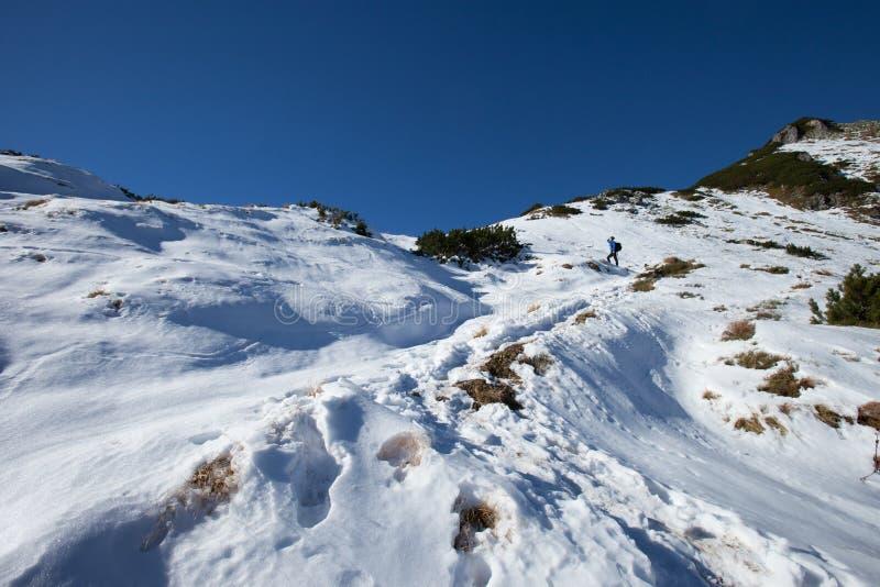 Slovakian Belianske Tatry mountains landscape. Beautiful slovakian Belianske Tatry mountains. Beautiful sunny panorama - Siroka dolina - wide valley in snow royalty free stock images