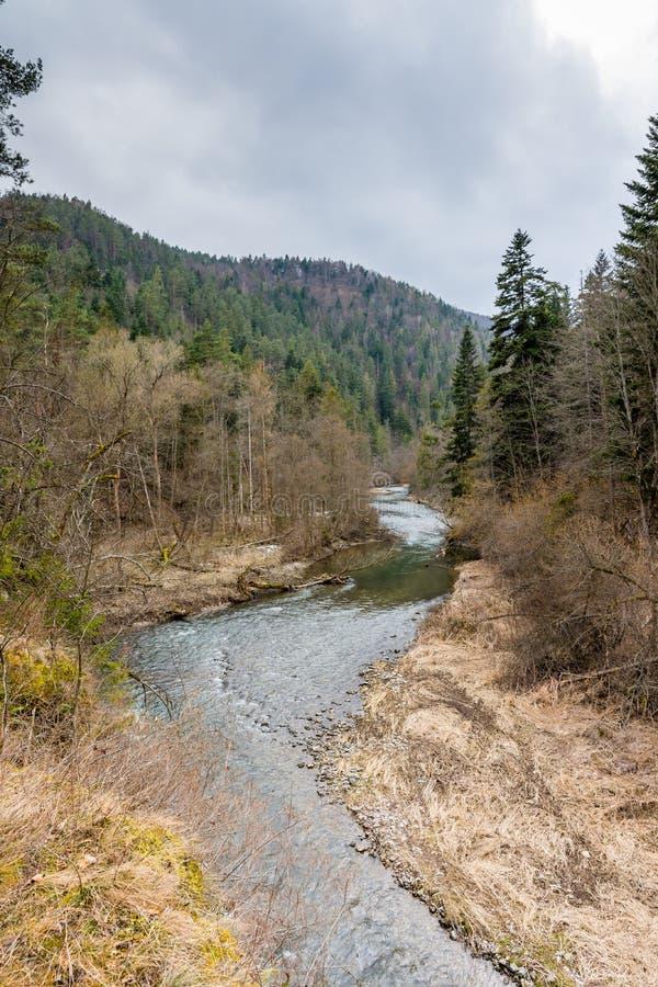 Slovakien paradis: flodkanjonen i den Slovakien medborgaren Forest Park arkivbilder