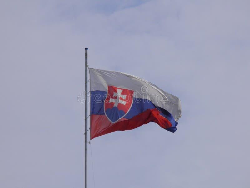 Slovakisk flagga av Slovakien arkivfoto