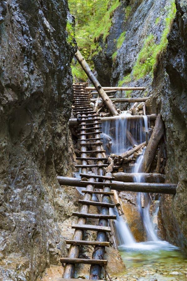 Slovakisk Paradise nationalpark, Slovakien Bergkanjon arkivfoton