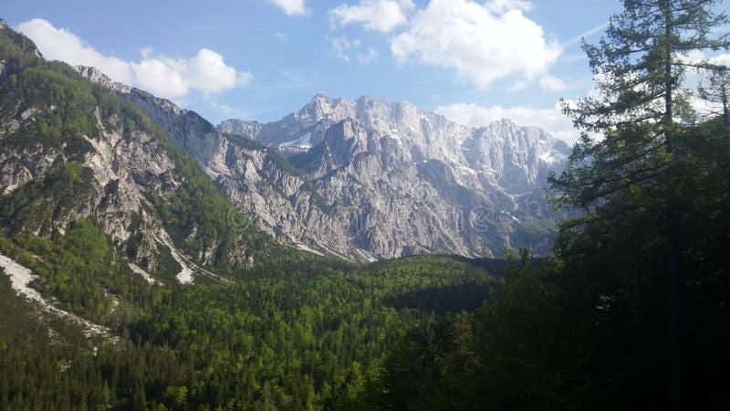 Slovenien Alpe sikt royaltyfri fotografi