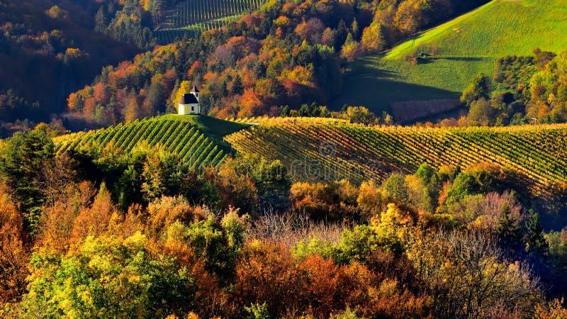 Slovenien landskap, höstplats, natur, berg arkivbild