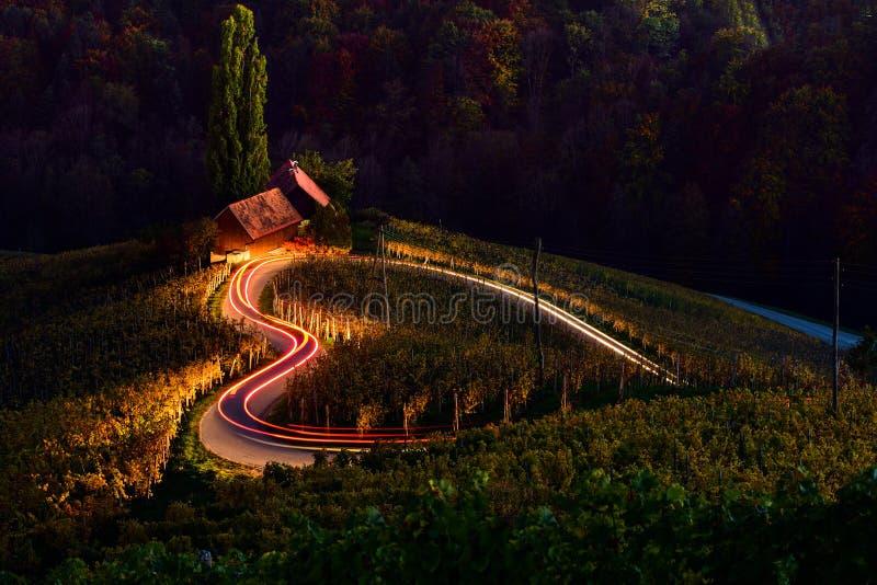 Slovenien landskap, hjortformväg, vinodling, höstplats, natur, berg royaltyfria bilder