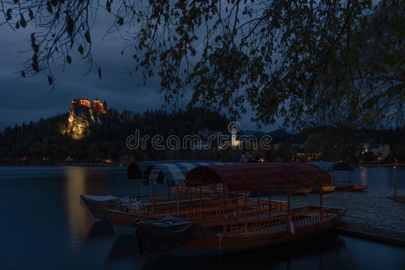 Sloveniens natur, Amazing Lake Bled,Senaste hösten I början av morgonen med översändningsskal och en bild av den böjda slottet Bl royaltyfri fotografi