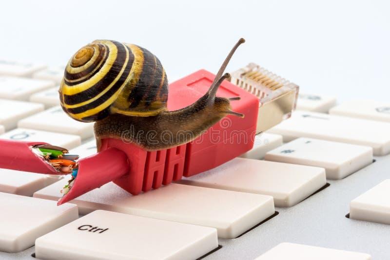 Slow internet access stock photos