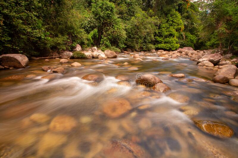 Slow motion water flow at recreational forest. Area Sungai Sedim, Kulim, Kedah stock photos