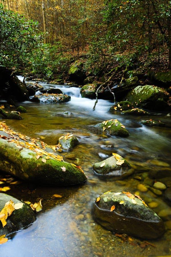 Free Slow Moving Creek Stock Photos - 12862223