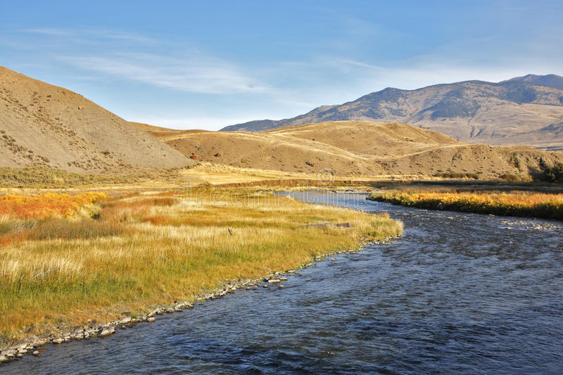 Download Slow watercourse stock photo. Image of journey, nobody - 10584624