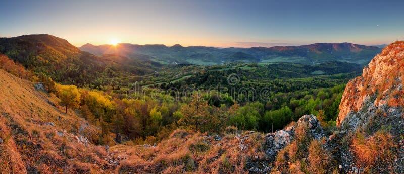 Slowakei-Frühlingswaldpanorama stockbild