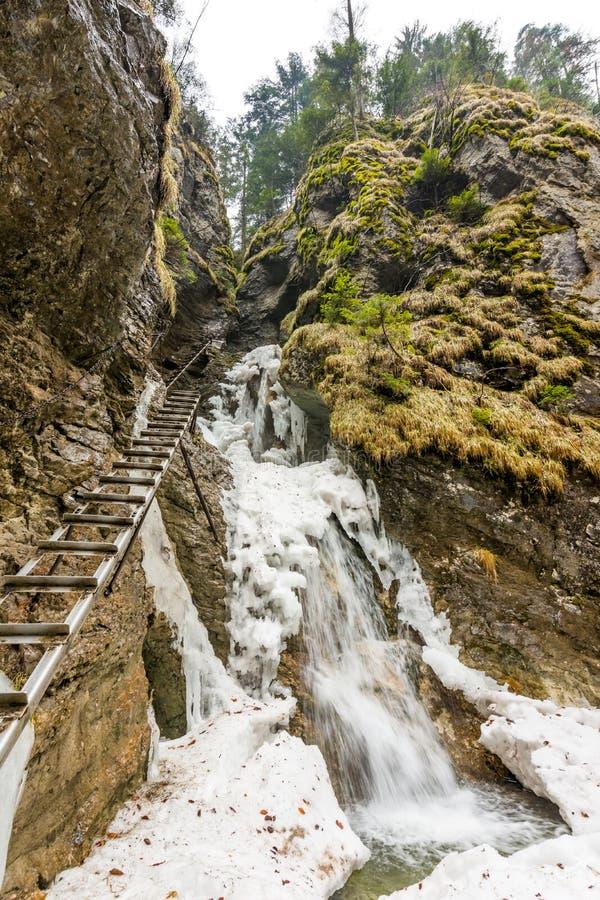 Slowakei-Paradies - Fluss Sucha Biela mit Wasserfall und Leiter nahe Touristischer Weg des Abenteuers in der Flussschlucht lizenzfreies stockfoto